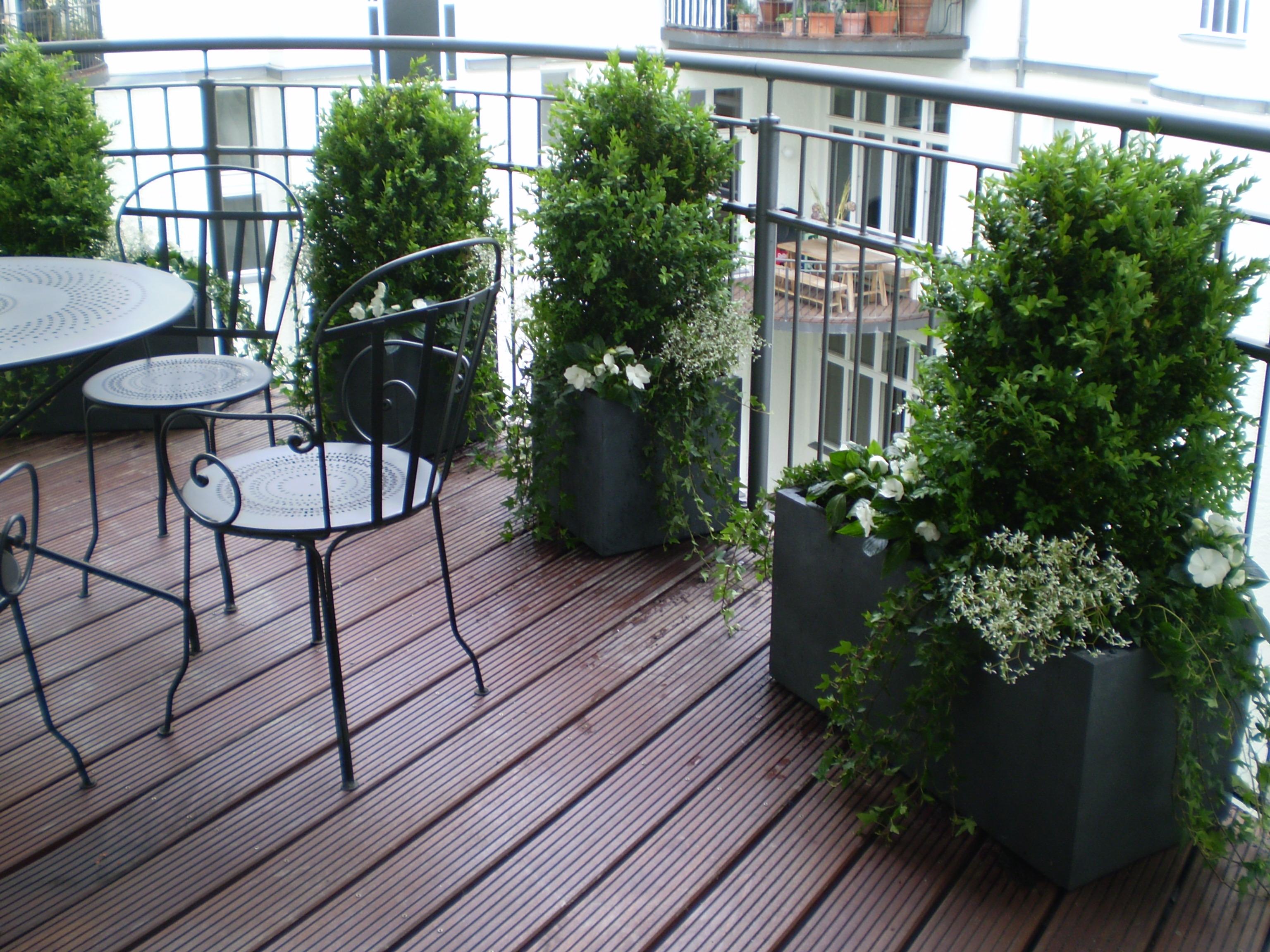 Leistungen projekte for Balcones decorados con plantas